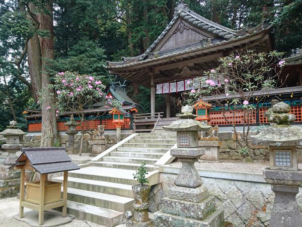 東大阪市の藤井カイロプラクティック 都祁山口神社 拝殿